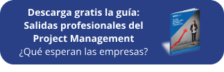 Ebook GRATIS: Salidas profesionales Project Management